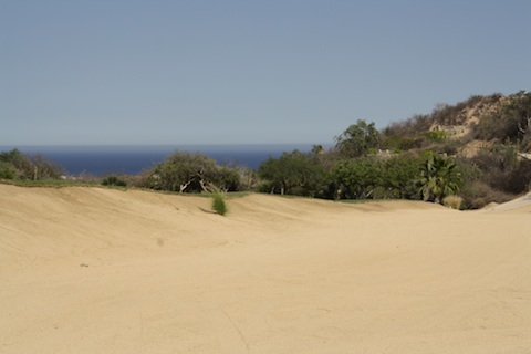 The climate in Cabo San Lucas is very dry and arid.