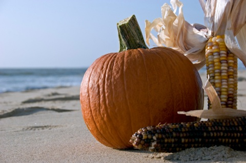 There are lots of things to do in Cabo in October. Fishing, Golf, Halloween Parties and more.
