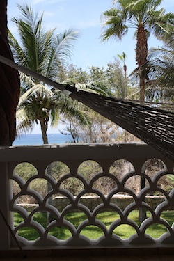 A Hammock at the Cabo Surf Hotel