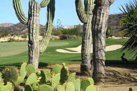 Mountain Golf Course at Palmilla