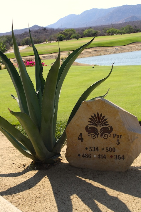 A Golf Course in Cabo San Lucas, Mexico combines water, desert and mountains.