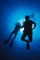 Scuba Diving in Cabo