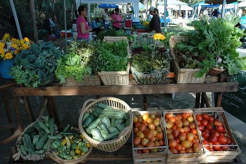 Organic Market in San Jose del Cabo