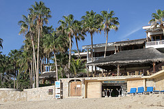 Cabo Surf Hotel and Spa is the perfect mix of luxury boutique hotel and surf-side bungalow.