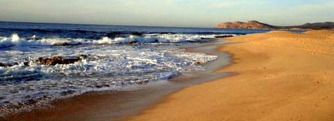A beach in Cabo San Lucas